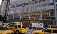 Small blog new york times