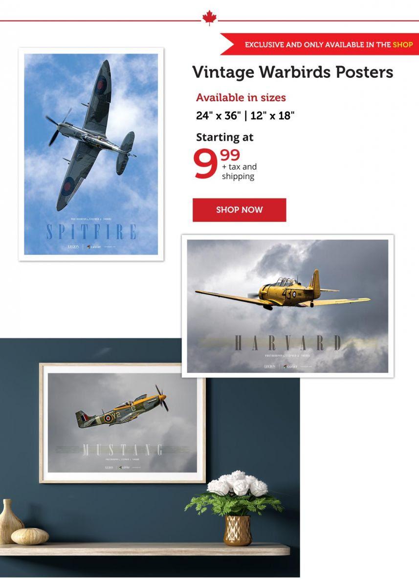 Vintage Warbirds Posters