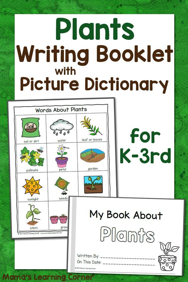 Plants Writing Booklet with Picture Dictionary