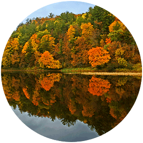 Fall color along the St. Croix River
