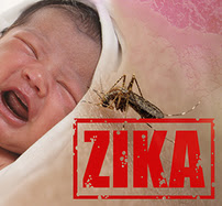 A baby, zika alert, and Aedes aegypti mosquito