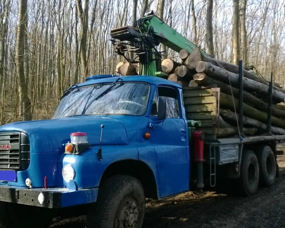 tazba dreva nitra