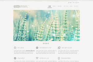 GoodMinimal Responsive WordPress