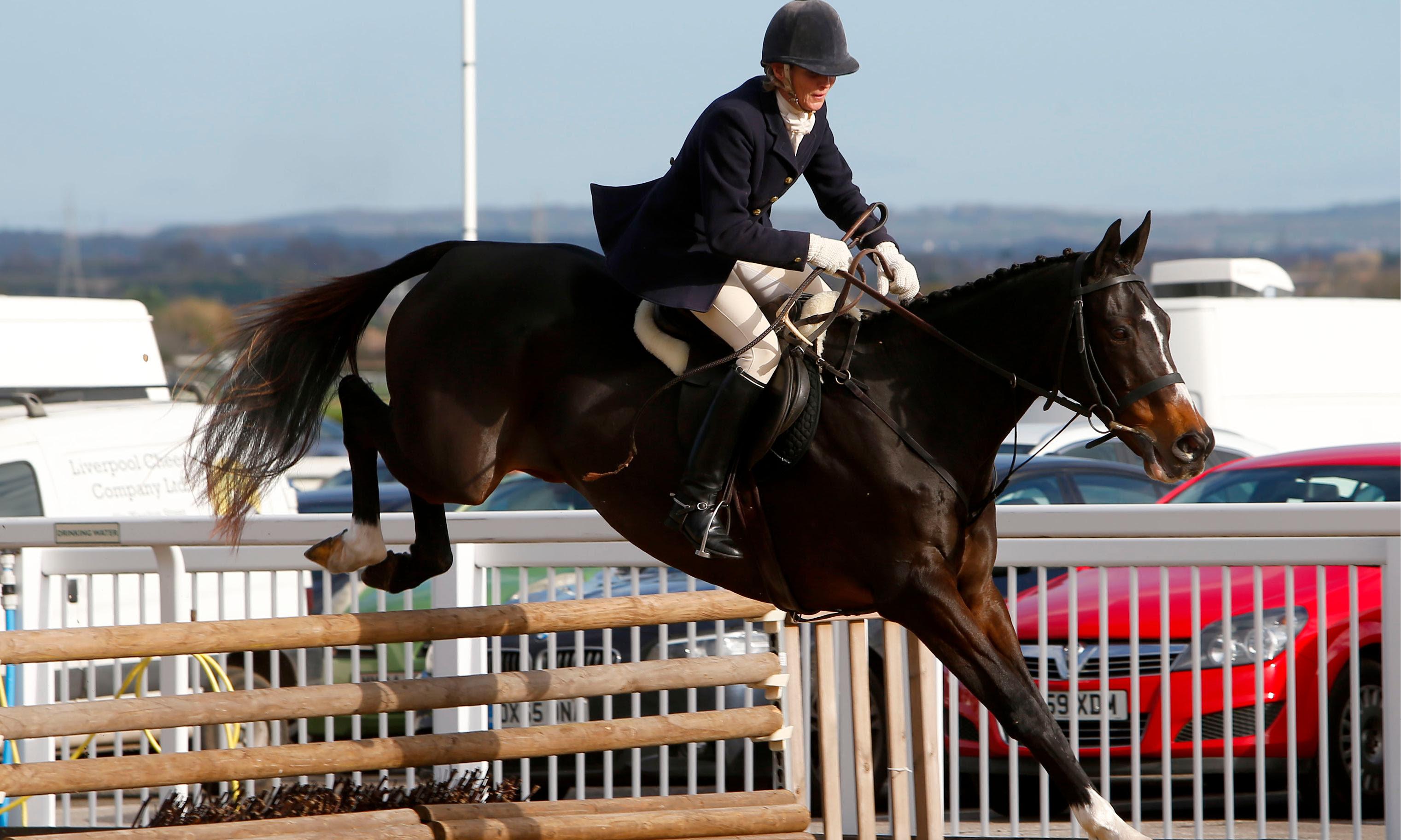 BHA launch racehorse aftercare survey