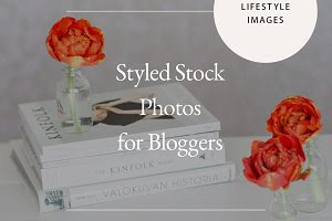 Styled Lifestyle Stock Photo Bundle
