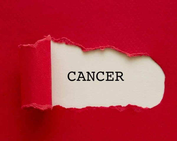 Image result for Thus tiny cell is good news for cancer survivors