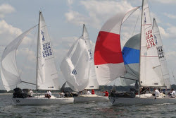 J/24s sailing with spinnakers