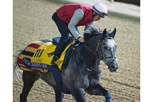 Roaring Lion trains at Churchill Downs