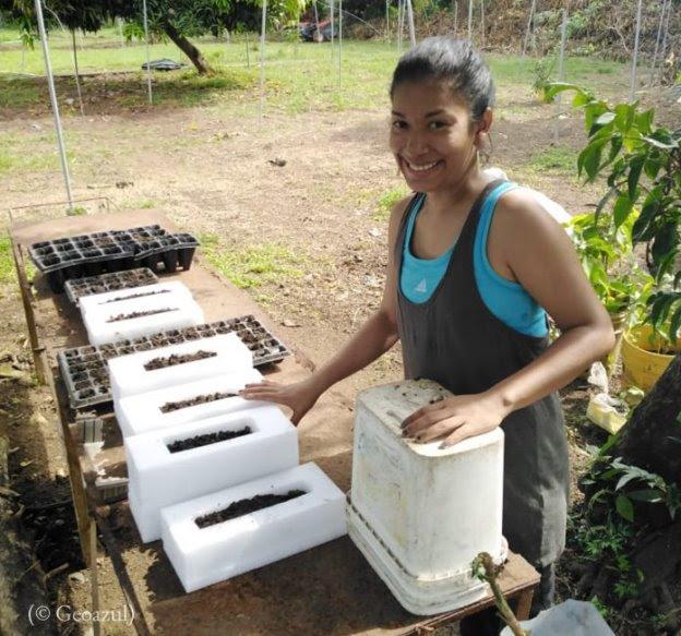 Una mujer colocando abono en contenedores (© Geoazul)