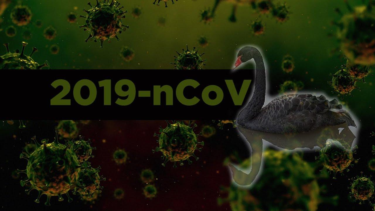 2019-nCoV Bioweapon Black Swan? plus more GlNOPkagLt
