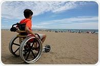 Multiple Sclerosis in Children