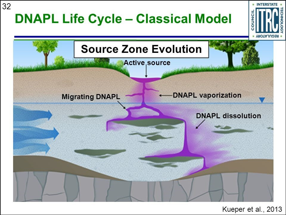 DNAPL