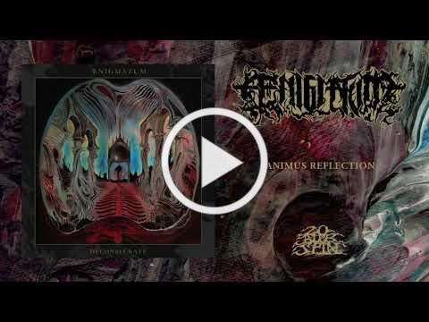 ÆNIGMATUM - Animus Reflection (From 'Deconsecrate' LP, 2021)