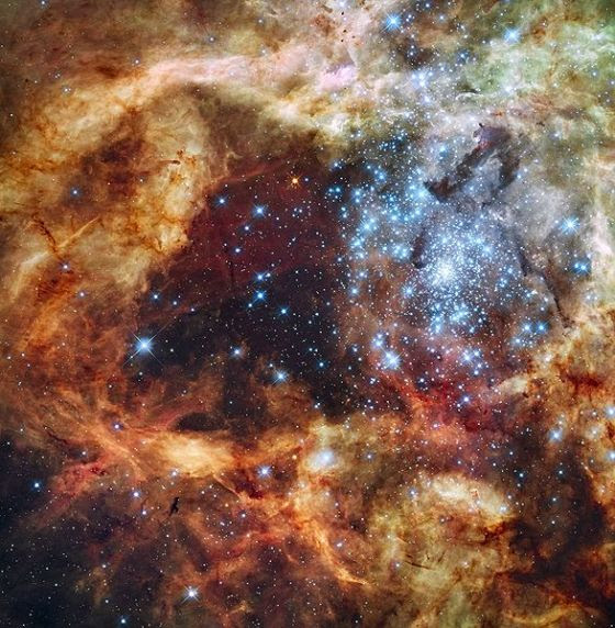 587px-Grand_star-forming_region_R136_in_NGC_2070_(captured_by_the_Hubble_Space_Telescope)