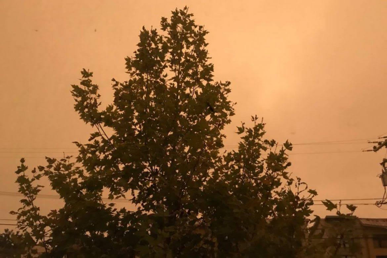 cielo-naranja-incendios-san-francisco-migrante-laura-duarte-1170x780