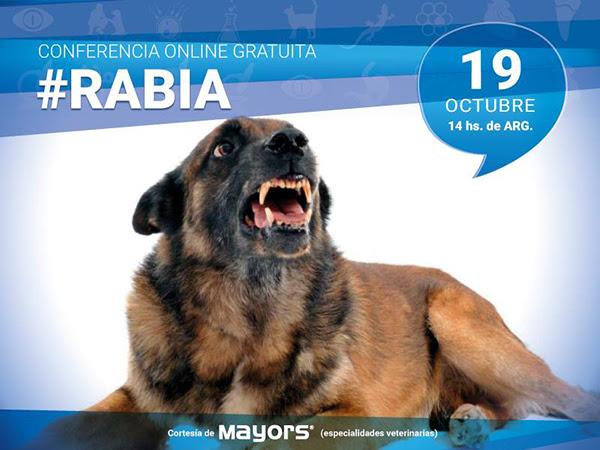 Conferencia para veterinarios sobre Rabia
