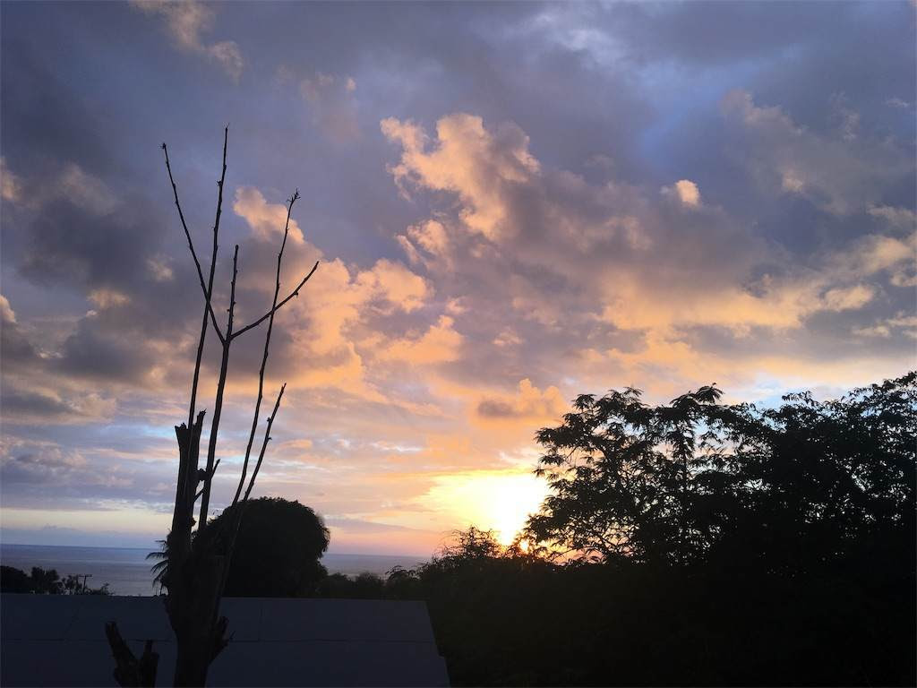 夕焼け。太陽が沈んだ後の光が残る。