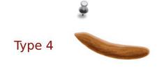 selles type 4