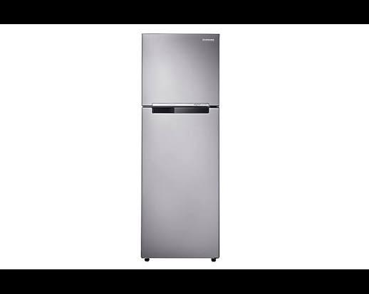 Samsung RT25 2 Doors Refrigerator with Digital Inverter - 255L