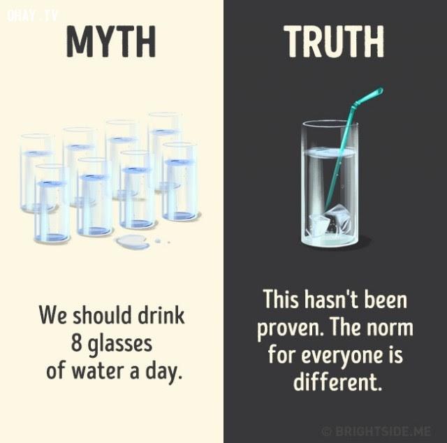10. Chúng ta nên uống 8 ly nước mỗi ngày. Sự thật là điều này chưa được chứng minh. Định mức cho mỗi người là khác nhau.,nhận thức sai lầm,các loại thức uống,khám phá,sự thật thú vị,những điều thú vị trong cuộc sống