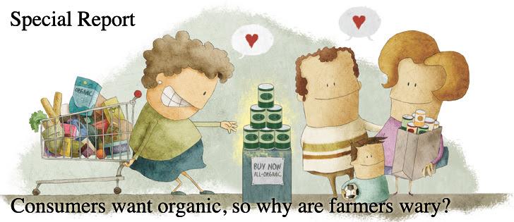organic-shopper-illus