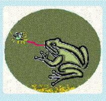 Resultado de imagen para el sapo y la luciérnaga