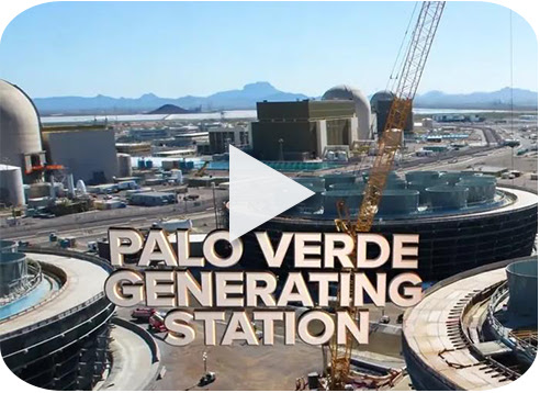 Palo Verde Generating Station VFT