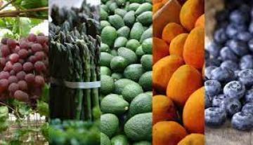 Agroexportaciones peruanas crecieron en valor 19% en los primeros 5 meses del año