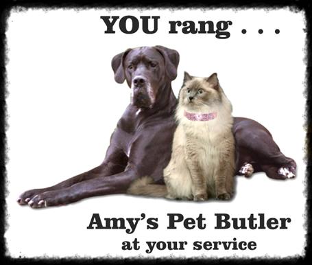 www.amyspetbutler.com