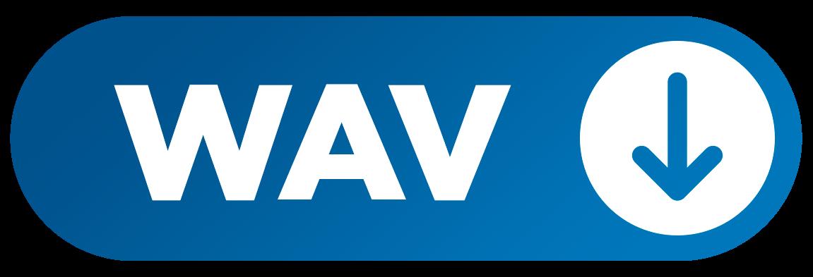 WAV BUTTON