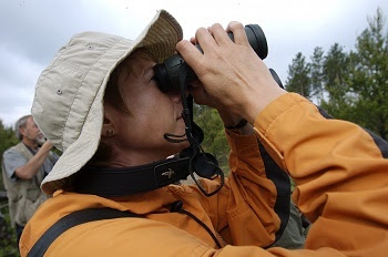 profile, head and shoulders view of a woman with short dark hair, wearing a tan hat and orange jacket and looking through binoculars