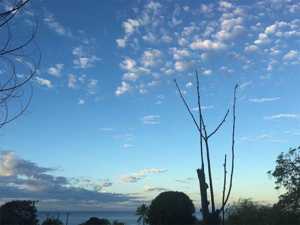 空にポンポン菓子のような雲。2月下旬の朝7時。