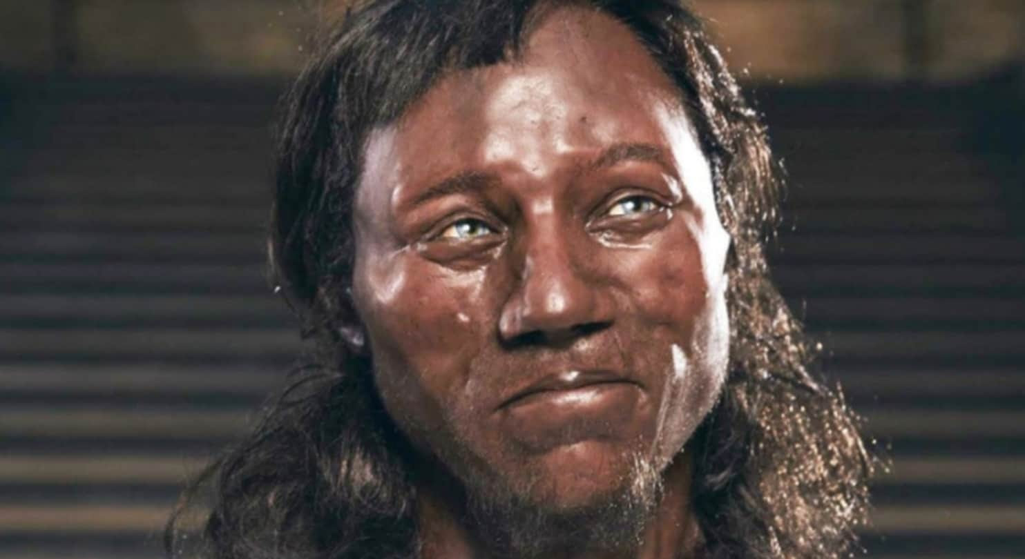 Image result for Cheddar man/Images