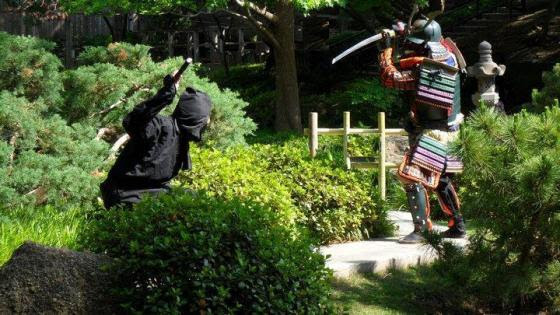 Samurai versus ninja