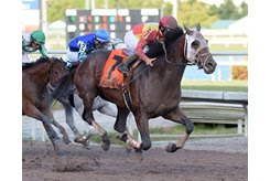 Fear the Cowboy wins the Harlan's Holiday Stakes at Gulfstream Park