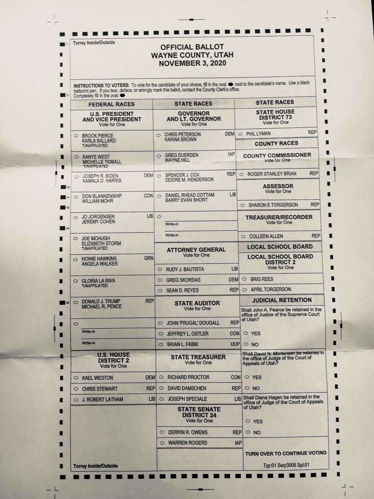 Wayne County sample ballot