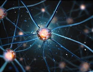 Autism linked to prolonged connection between brain regions