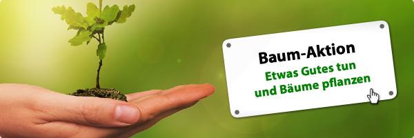 https://www.exsila.ch/verschiedenes/1x-baum-pflanzen-3799173