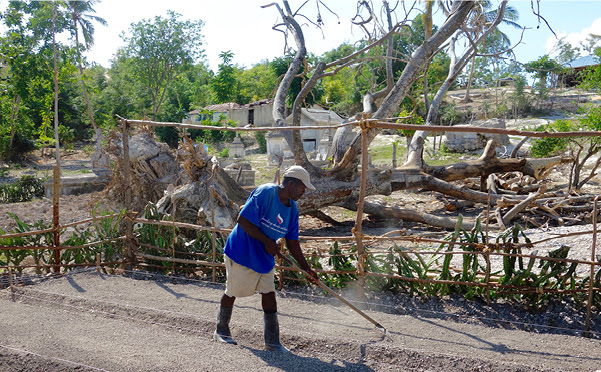 A Phoenix Rising in Haiti