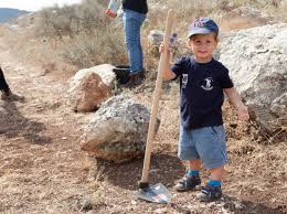 Image result for planting trees israel images free