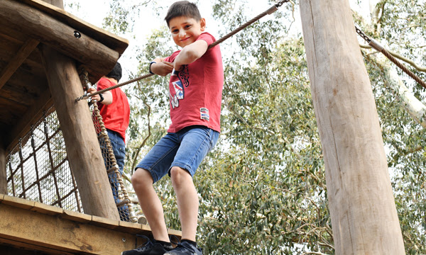 Image of a boy on a climbing frame
