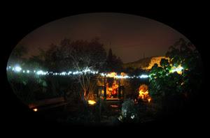 solstice-garden-2009-72.jpg