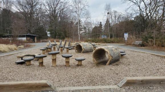 Whimsical Woodland Park