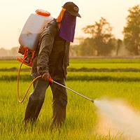Pesticides : d'après vous, lequel des deux ministres fait le bon choix ?