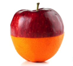 apples-and-oranges-300x2682.png