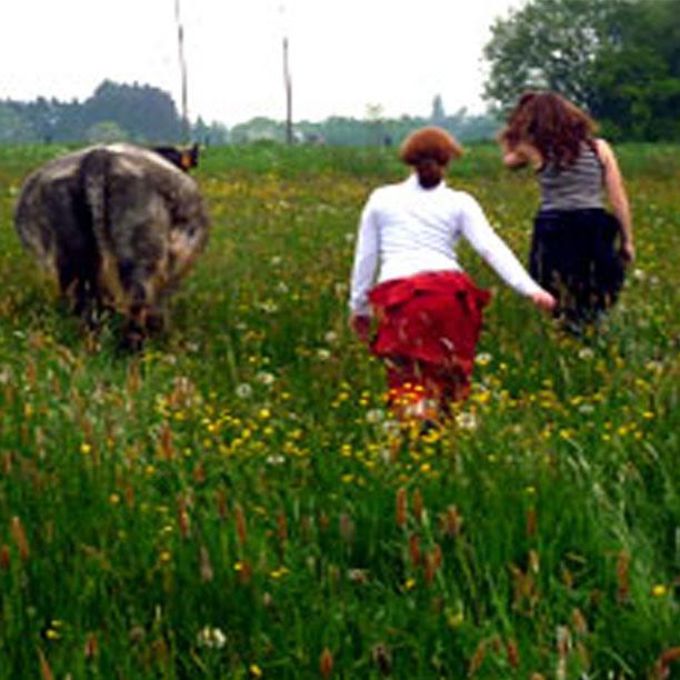 Visite d'une ferme en biodynamie