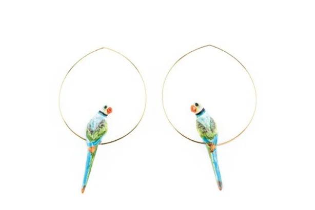 Nach Parrots Blue