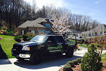 residential animal removal