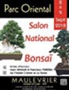 divers bonsai