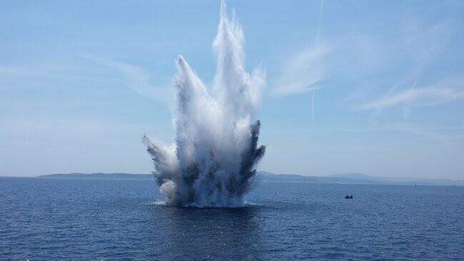 Wybuch w Bałtyku – co ze zwierzętami?